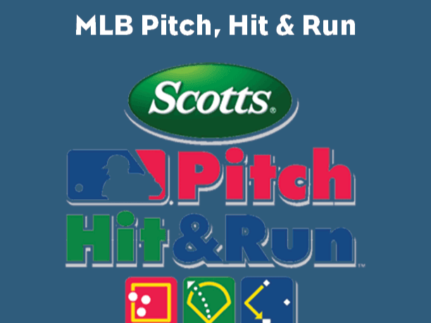 Website MLB Pitch Hit Run