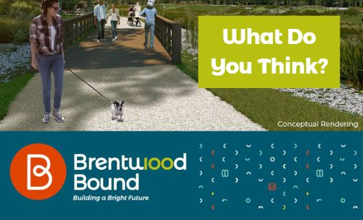 Brentwood Bound Feedback Spotlight