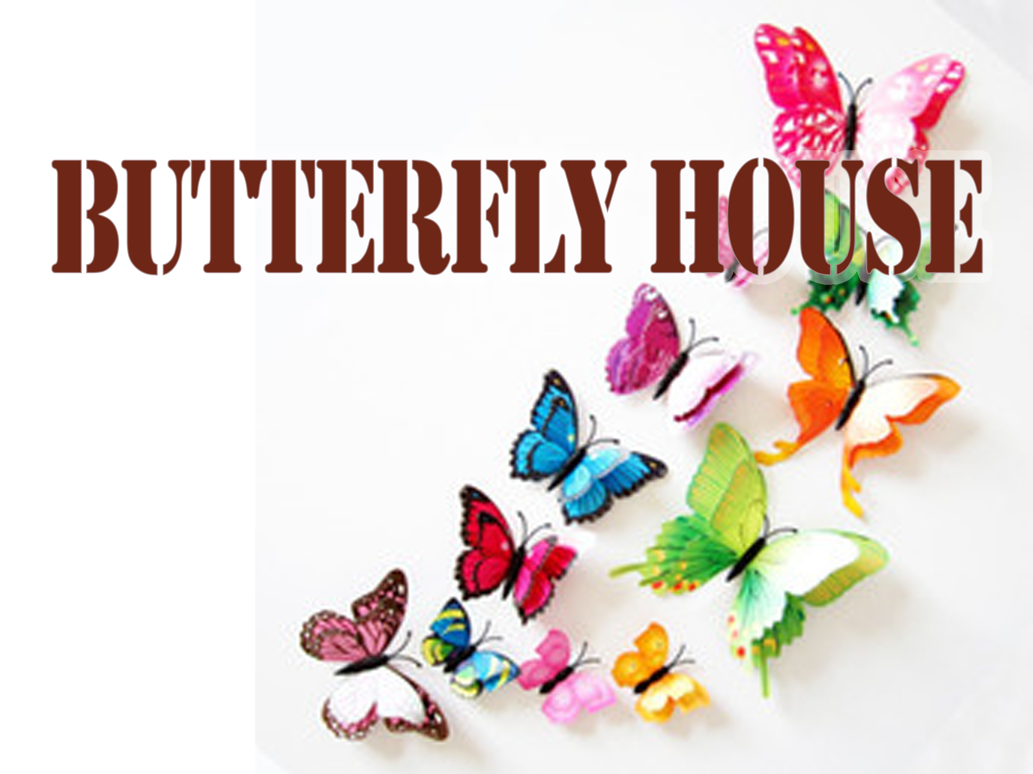 ButterflyHouseGraphic